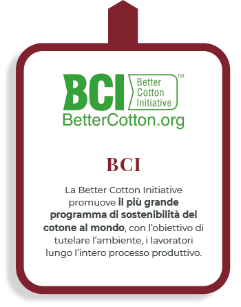 BCI_mobile